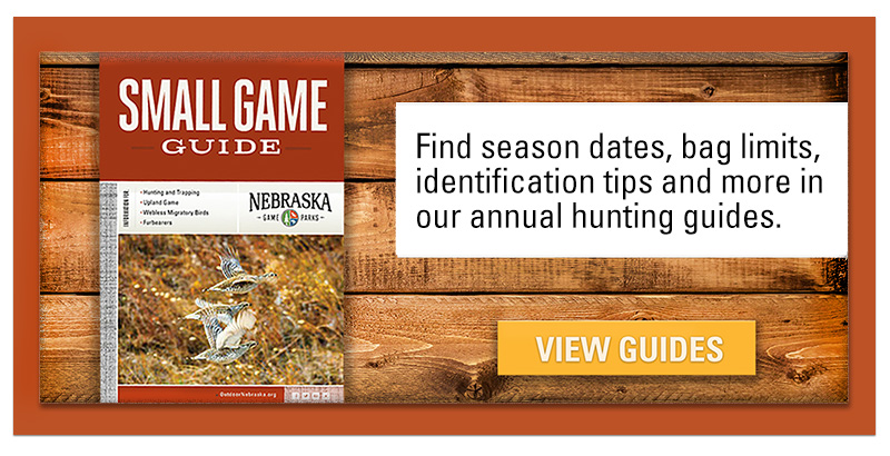 small game hunting guide